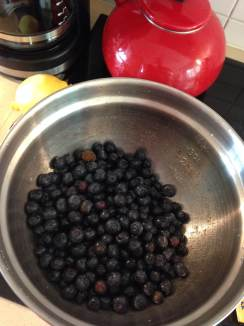 Blueberry filling, ready to go.